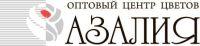Компания Азалия