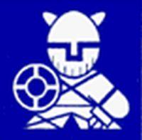 Группа компаний Липецк Викинги