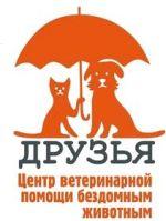 Ветцентр для бездомных животных Друзья