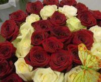 Магазин цветов Зеленый дом+