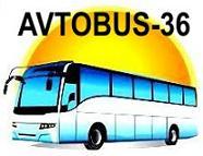 Компания Автобус-36