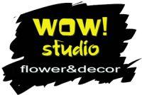 Компания Wow Studio