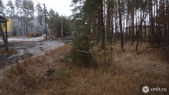 Продам участок, рядом с лесом и рекой!. Фото 1.