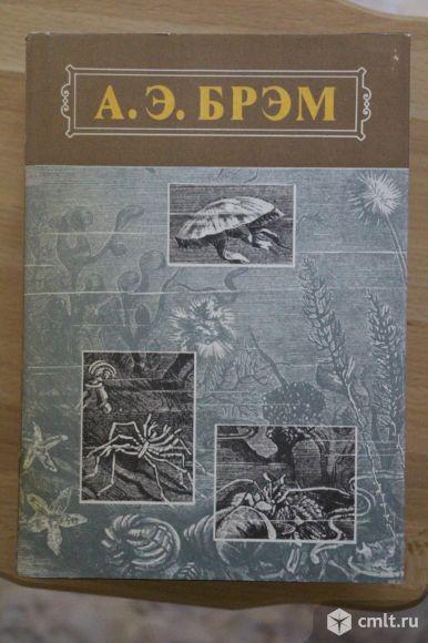 А.Э.Брэм Жизнь животных. в 3-х томах. Фото 4.