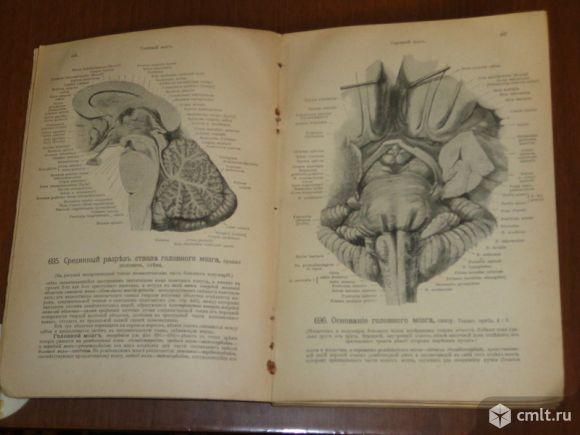 Продаю книги по медицине.. Фото 3.