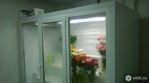 Холодильная камера для цветов. Фото 3.