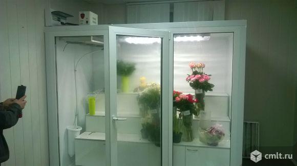 Холодильная камера для цветов. Фото 1.