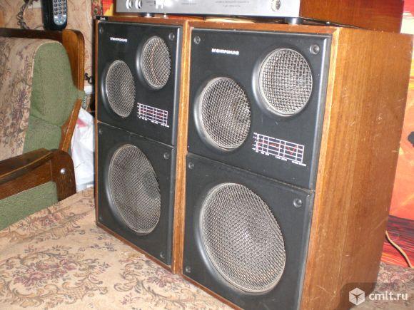 Акустическая система Электроника Д1-012