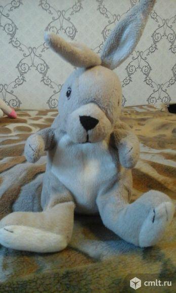 Заяц из мультика. Фото 1.