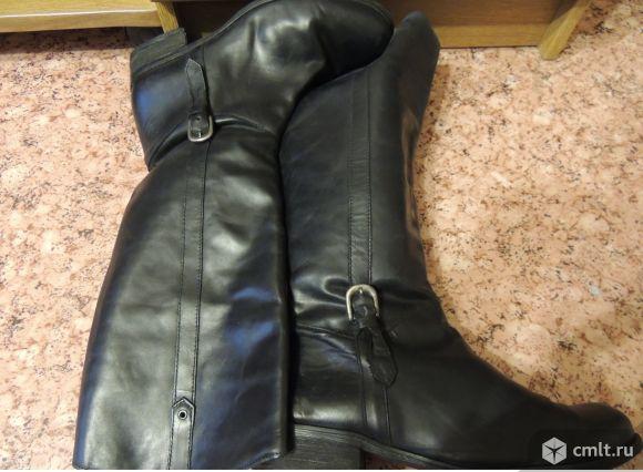 Продам кожаные сапоги. Фото 1.