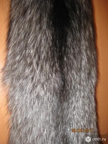 Лиса черно-бурая