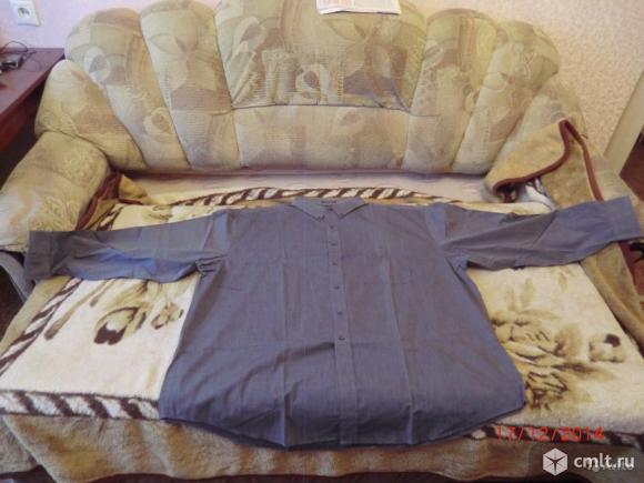 Рубашки большого размера, новые. Фото 1.