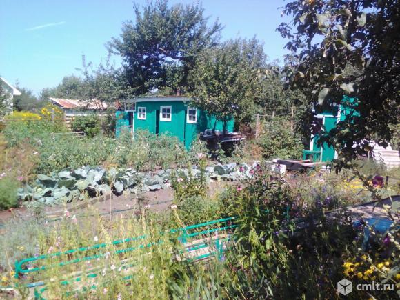 Продаётся участок 10 сот. с домом 60 м2. Надворные постройки. Кирпичная шашлычница. Плодоносящий сад