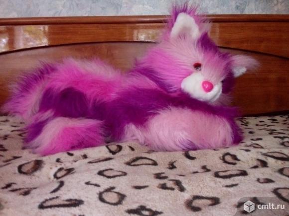 Кошечка. Фото 1.
