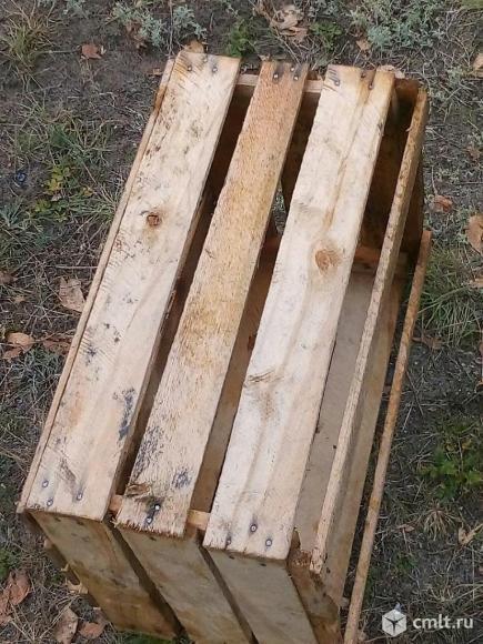 Ящики для яблок. Фото 1.