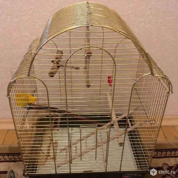Продаю клетку для попугаев.