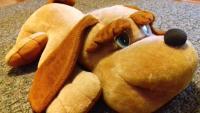 Символ года - большая собака