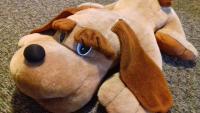 Огромная лежачая собака
