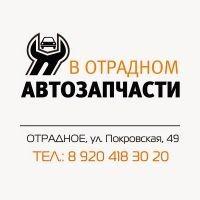 Автосервис в Отрадном, автомагазин