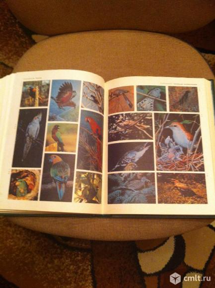 Жизнь животных 7 книг