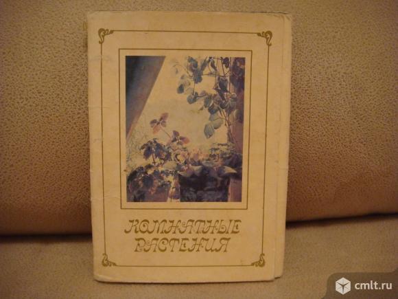 Набор открыток СССР (15шт. ).комнатные растения. Фото 1.