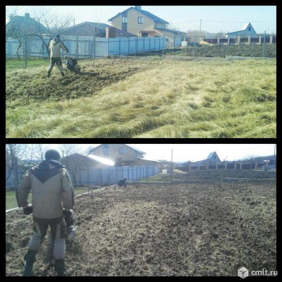 Культивация земли мотоблоком. Фото 1.