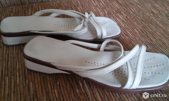 Обувь, кожа