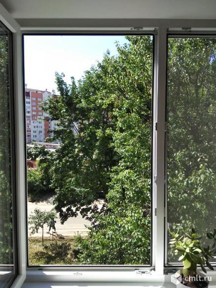 окно из кухни.