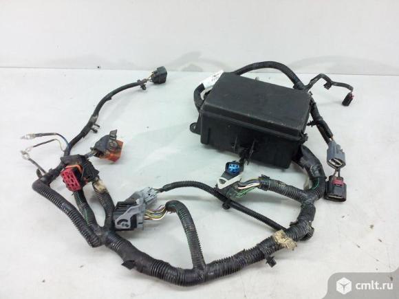 Проводка моторного отсека FORD TRANSIT 15- б/у 2185429 3*. Фото 1.