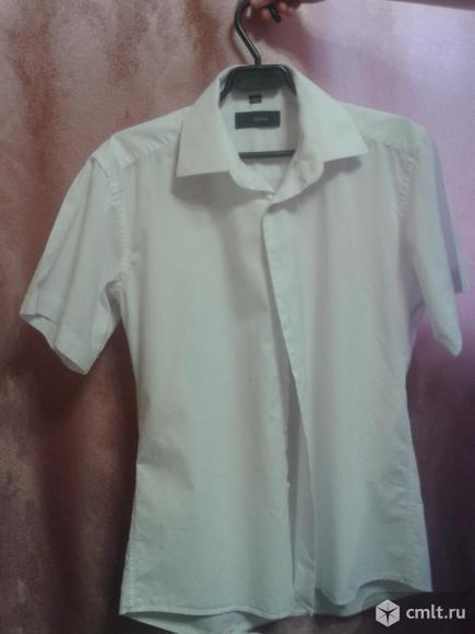 Рубашки. Фото 2.