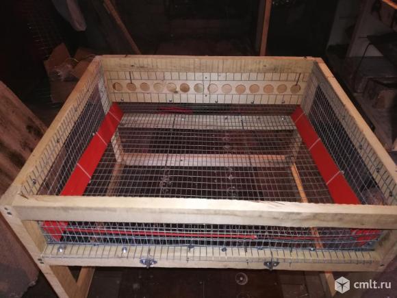 Клетки для перепелов на заказ