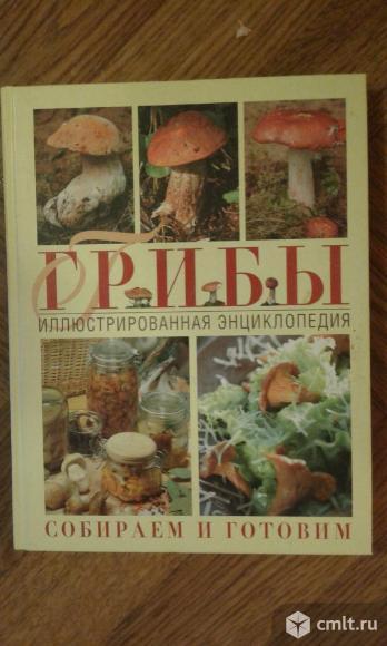 Энциклопедия. Фото 1.