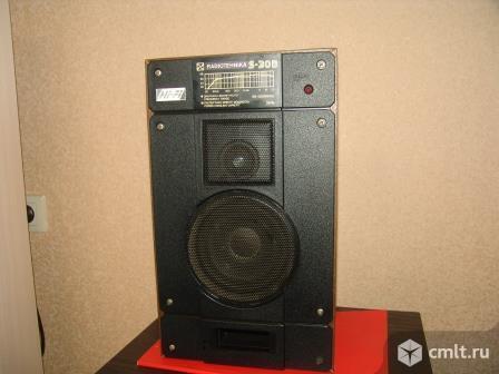 Акустическая система Радиотехника