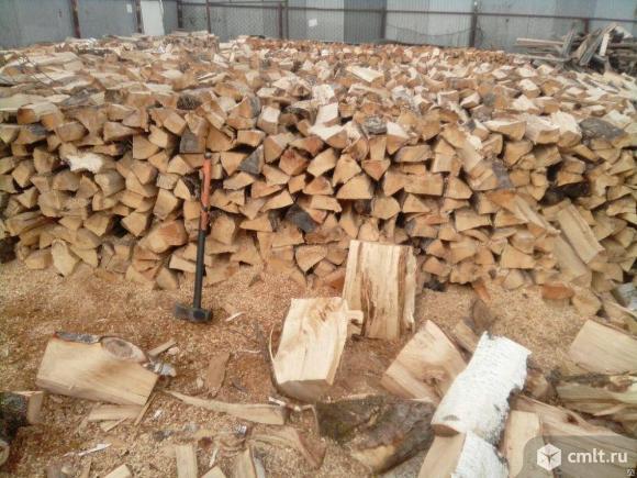 Дрова сухие дубовые березовые