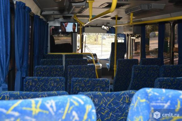 Автобусы. Фото 7.