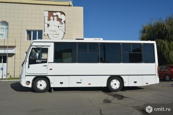 Автобусы. Фото 1.