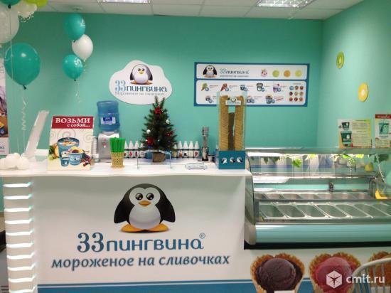 33 пингвина, продажа мороженого. Фото 2.