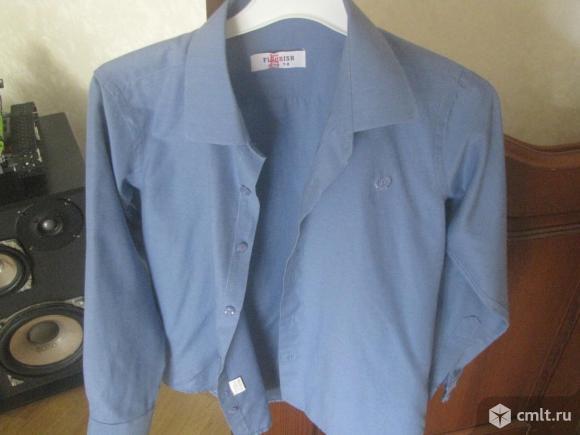 Рубашки FLOURISH. Фото 2.