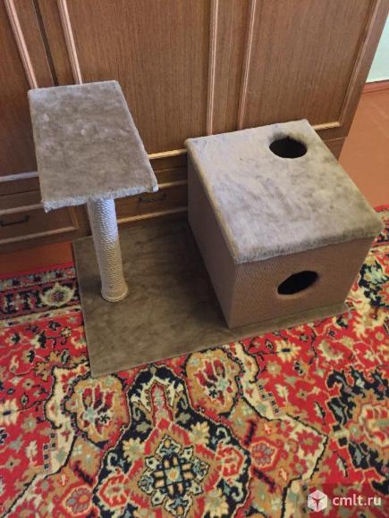 Дом для котенка, когтеточка. Фото 1.