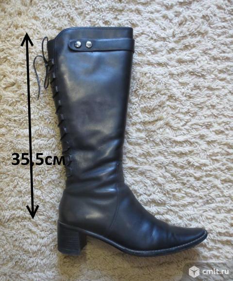 Сапоги черные кожаные зимние, устойчивый каблук 5,5 см натуральный мех, обхват голени до 34 см. Фото 10.