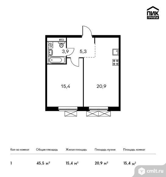 1-комнатная квартира 45,5 кв.м. Фото 1.