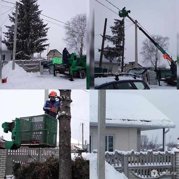 Спиливание деревьев   ( аварийных ) в Воронеже. Фото 10.