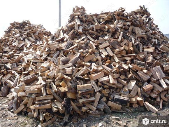 Дрова 36 разных пород. Фото 3.