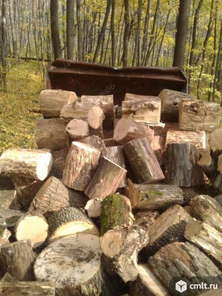 Дрова березовые, дубовые, сосновые, сухие, 1-10 куб.м