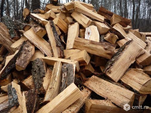 Дрова дубовые, сосновые, березовые, осиновые, по 1 машине. Фото 1.