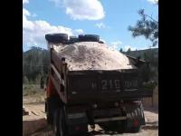 опилки сосновые доставка самосвалом по 5-10 кубов по воронежу и области
