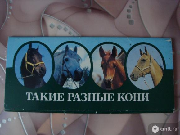 """Комплект открыток """"Такие разные кони"""". Фото 1."""