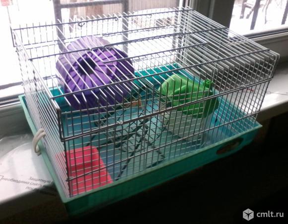 """Клетка для грызунов """"Triol"""" прямоугольная двухэтажная, 39,5x29,5x23 см."""
