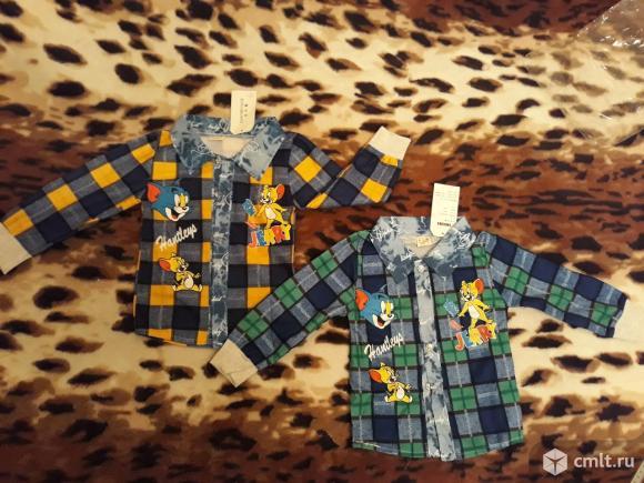 Две новые рубашки Том и джерри, размер L (74-80). Danybeyhloe. обхват груди 54. длина от п. Фото 1.