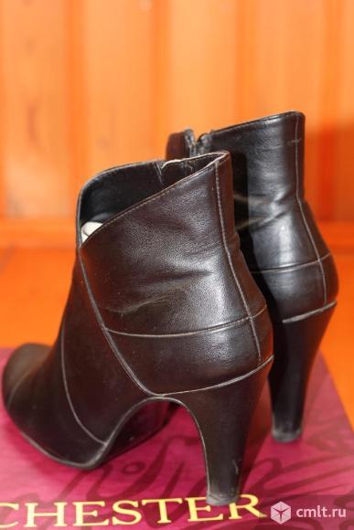 Ботильоны женские кожаные Chester. Фото 4.